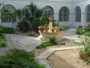 patio b.reducida.jpg